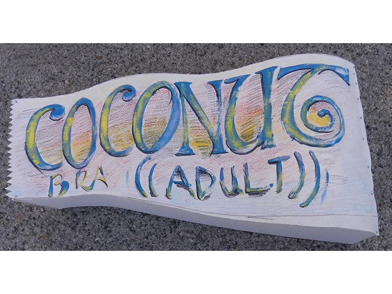 03_Coconut-bra