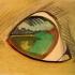07_Pond-Eye thumbnail